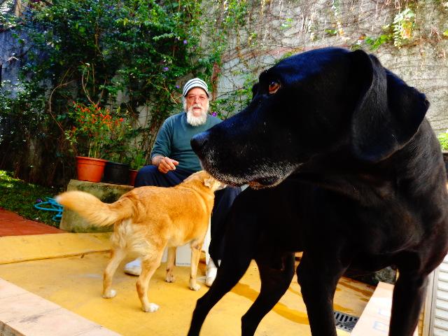 O músico no quintal de sua casa, em companhia de seus cães (Foto: Carlos Bozzo Junior)