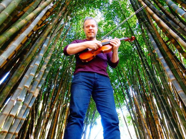 violinista Nicolas Krassik